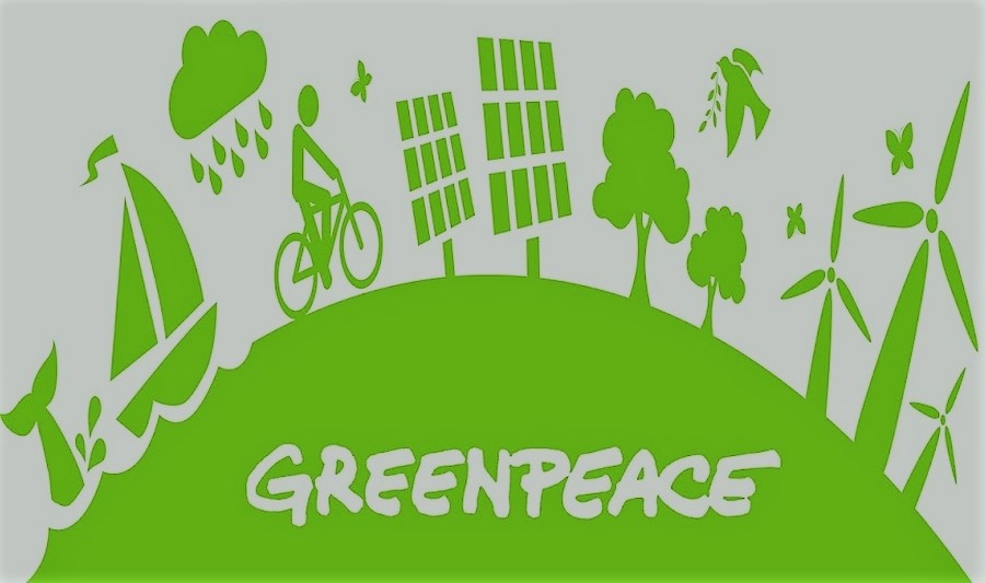 the historical background of the greenpeace organization Green movement green movement is the term used to  historical background and  outfit into a global organization mctaggart formed greenpeace in.